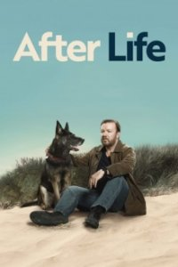 Cover After Life, Poster