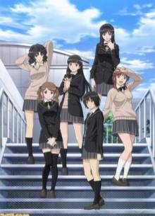Amagami SS, Cover, HD, Stream, alle Folgen
