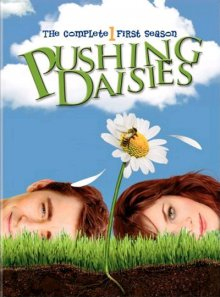 Cover der TV-Serie Pushing Daisies