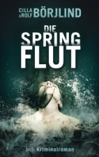 Cover Springflut, Poster Springflut